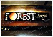 svetovoikorobforest